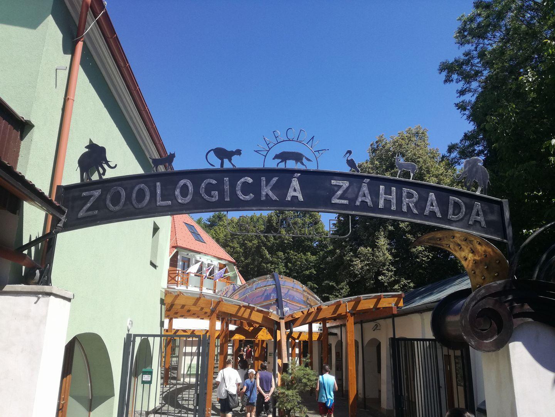 Zoologická záhrada v Bojniciach privítala 23-miliónteho návštevníka