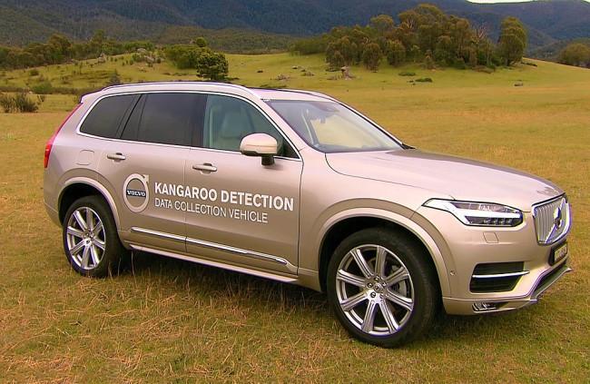 Nová technika v autách chce predvídať správanie detí a kengúr