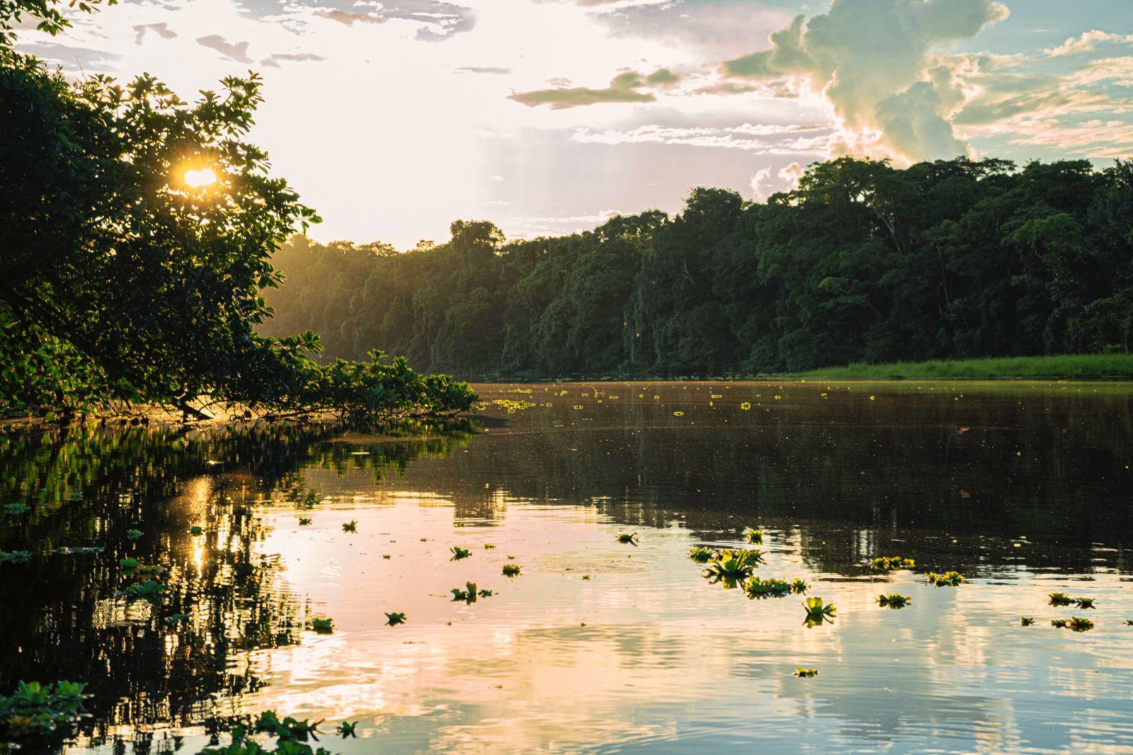 Štúdia: Amazon vznikol vďaka meteoritu, ktorý vyhubil dinosaurov