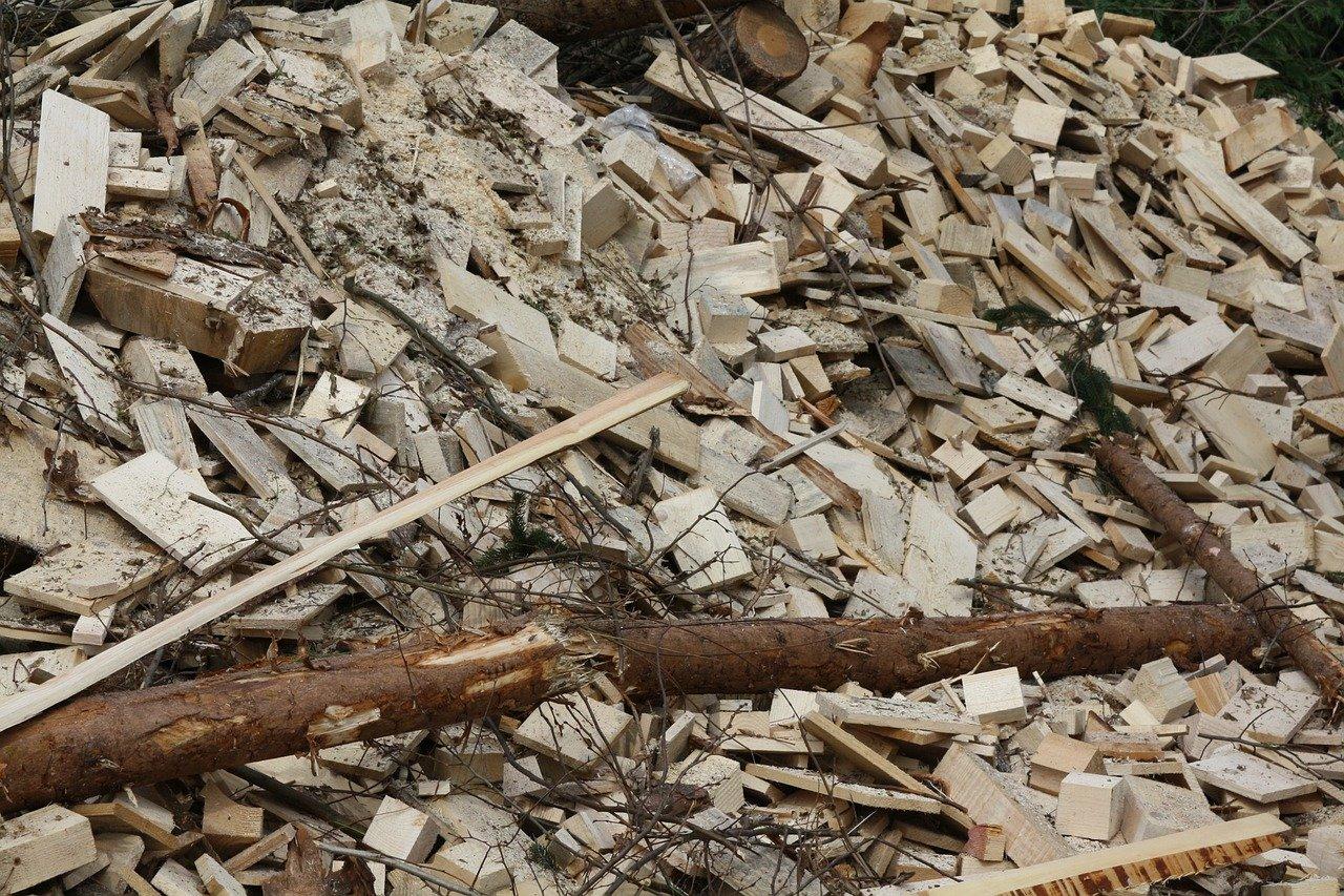 Spaľovanie biomasy nie je podľa environmentalistov obnoviteľný zdroj energie a má negatívny dopad