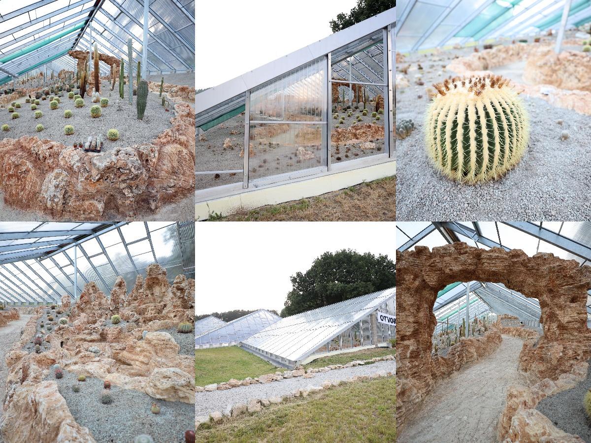 Botany Park Bojnice (kaktusárium)