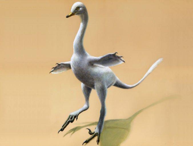 Vedci objavili pozostatky nového dinosaura, vyzerá ako kačica
