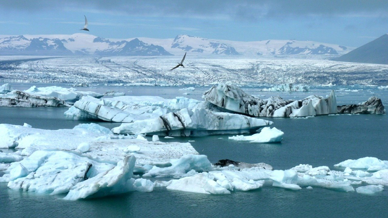 Vedci zrejme objavili nový druh dravého dinosaura, žil pred miliónmi rokov v Arktíde