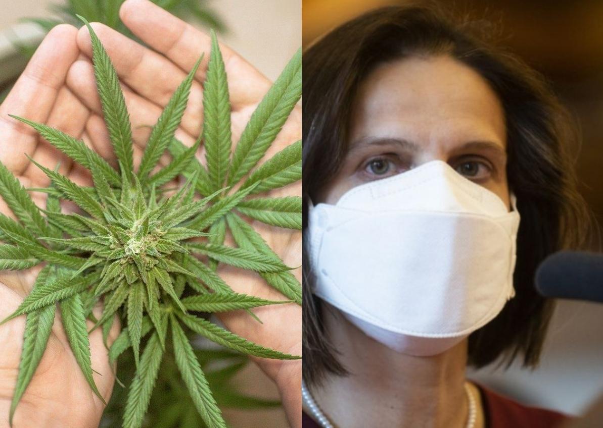 Kolíková: Musíme odlišovať užívateľa marihuany od dílera