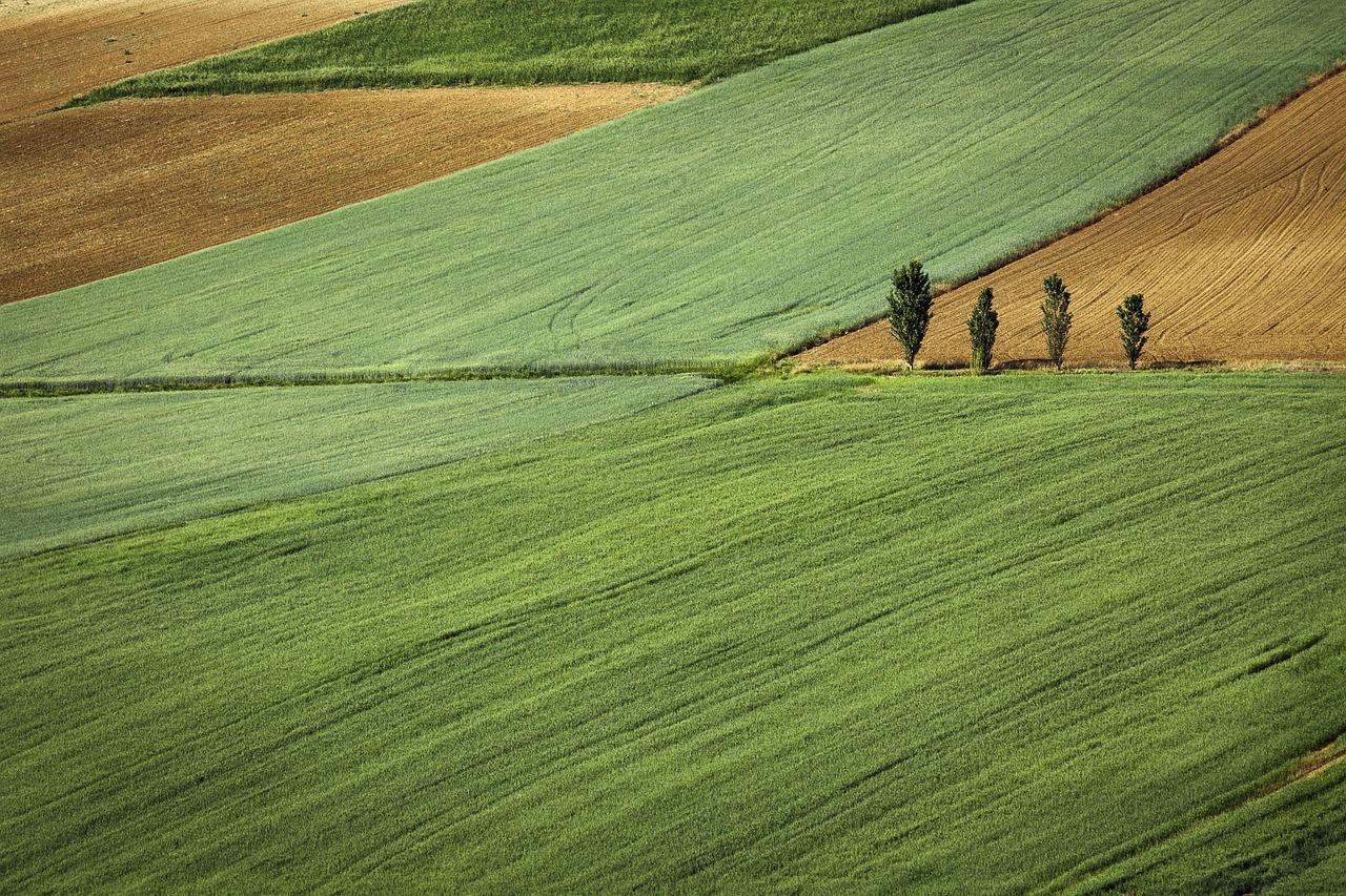 Čaputová ohrozuje pozemkové úpravy na Slovensku, ministerstvo označilo jej dôvody za chybné
