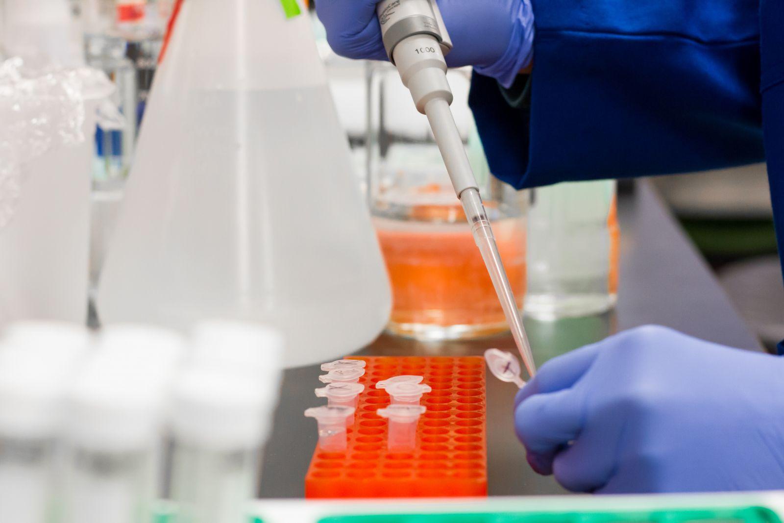 Už vyše 200 potenciálnych liečiv proti Covid-19 našla slovenská umelá inteligencia