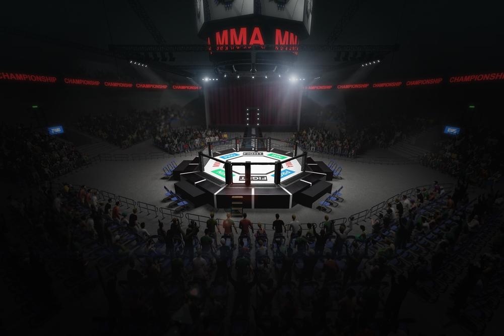 Galavečer v Oktagone MMA priniesol vyhecovanú show a bleskový hlavný zápas