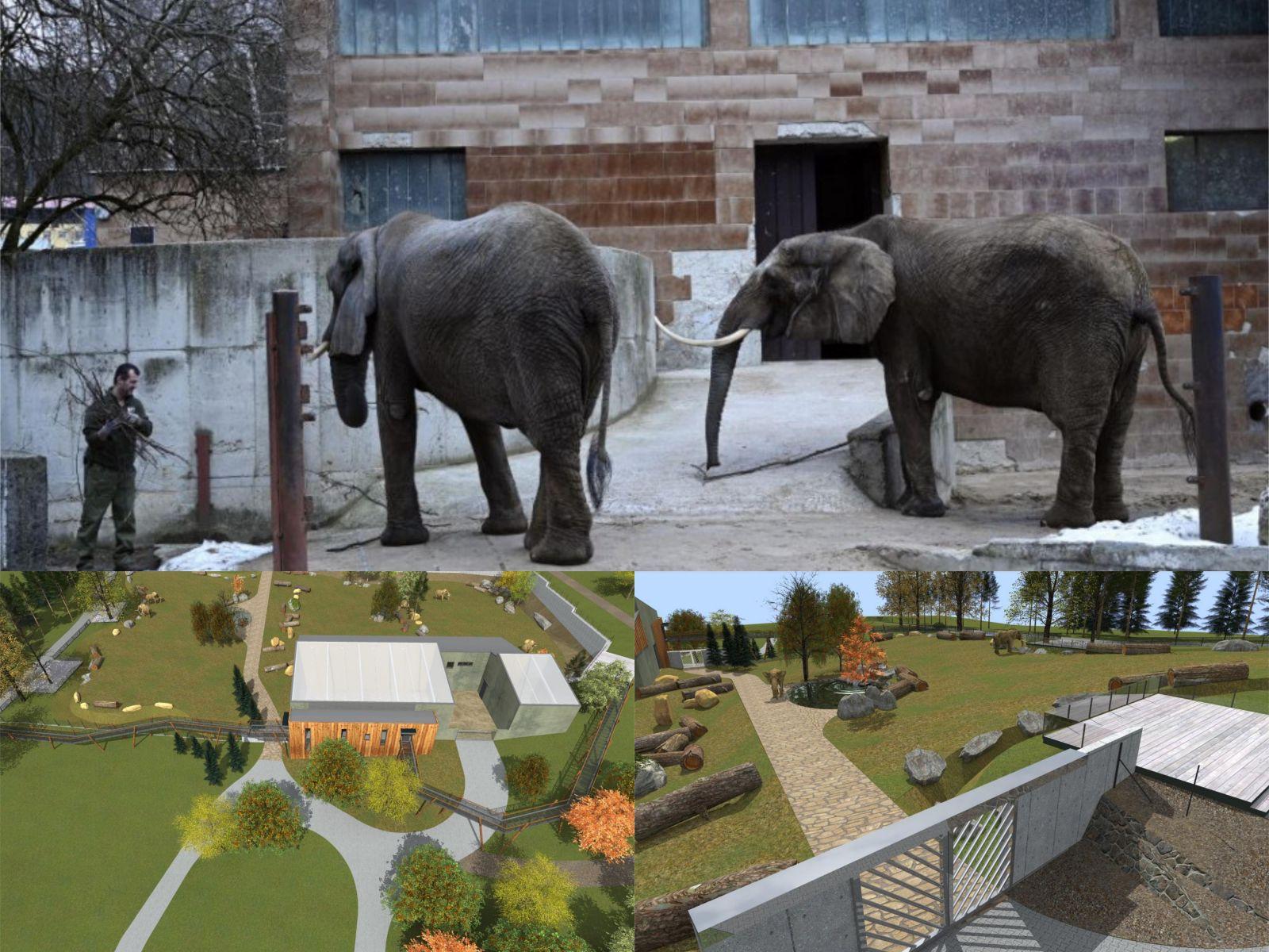 Slony Zoo nový pavilón