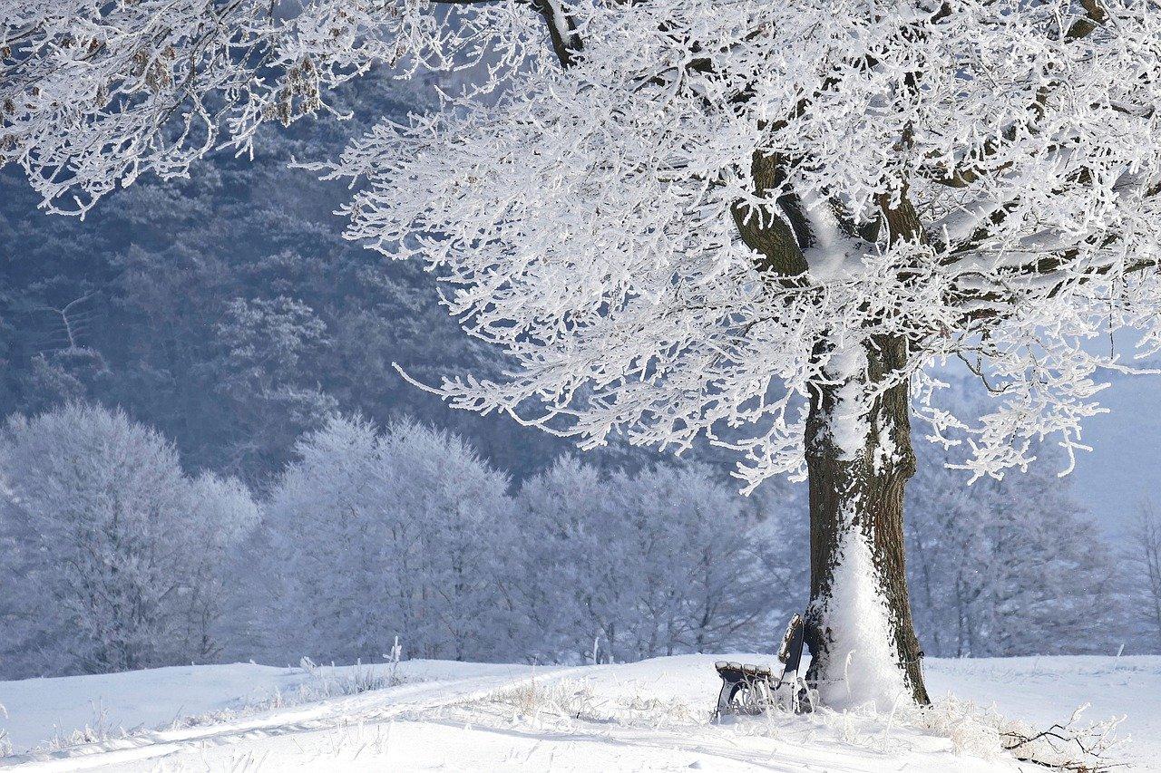 SHMÚ varuje pred nízkymi teplotami, pozor aj na snehové záveje
