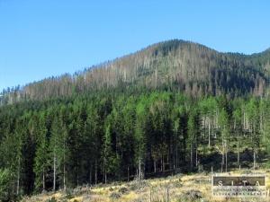 Štátne lesy tanap otvorili náučný chodník zadné meďodoly